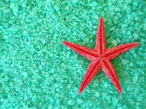 http://www.dreamstime.com/stock-photography-red-fish-star-salt-image16153622